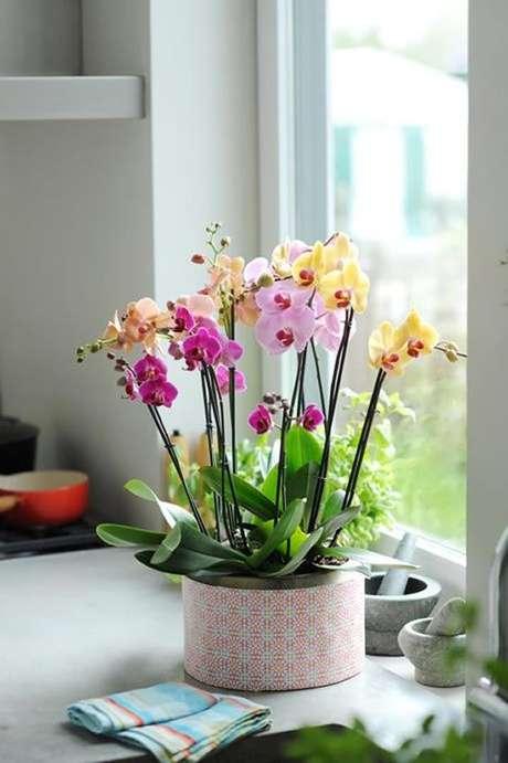 26. Vaso para orquídeas naturais – Via: Como Fazer em Casa