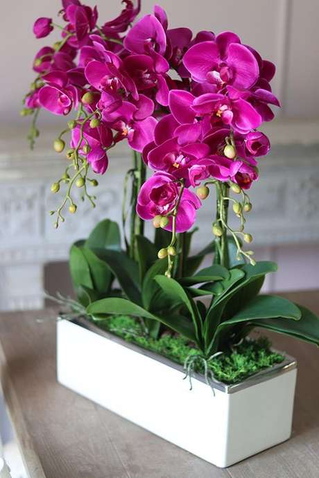 3. Vaso de orquídea pink para sala – Via: Hotmart