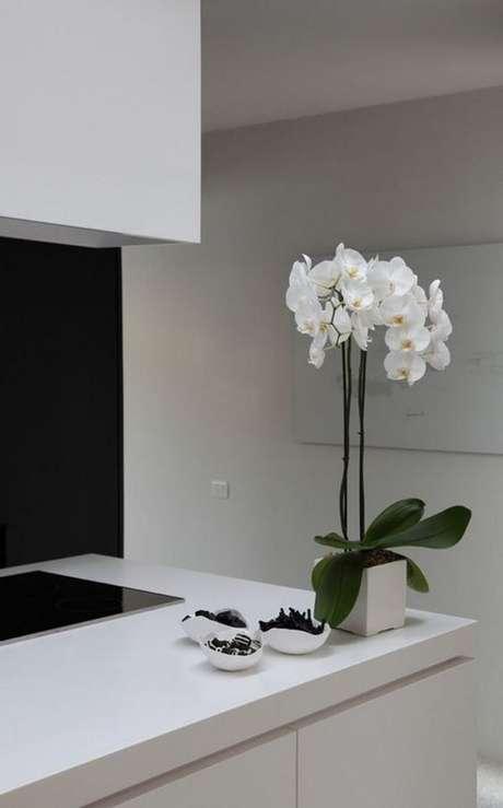 36. Vaso de orquídea simples – Via: Pinterest