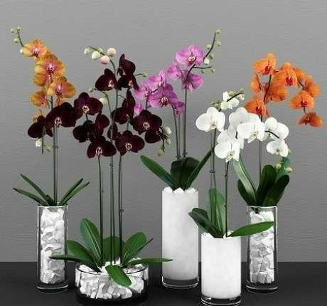 39. Vaso de vidro para orquídeas – Via: Pinterest