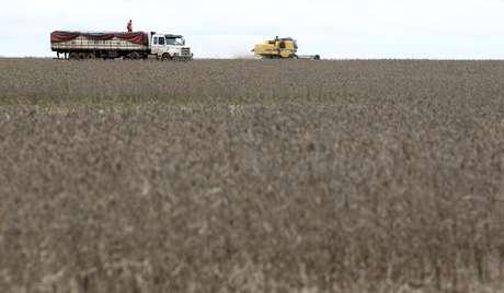 Colheita de soja em Primavera do Leste (MT)  07/02/2013 REUTERS/Paulo Whitaker