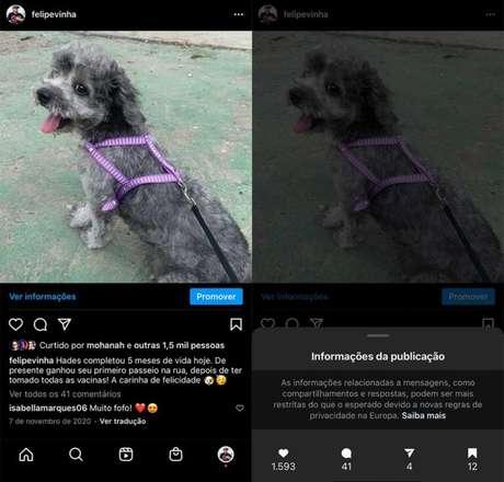 Como ver se sua foto foi salva no Instagram (Imagem: Reprodução/Felipe Vinha)