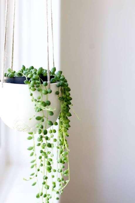 2. Suculentas pendentes de sombra com vaso branco – Via: Pinterest