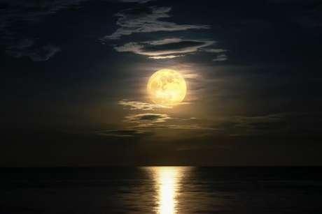 Saiba como a Lua Cheia em Leão vai influenciar sua vida - Shutterstock