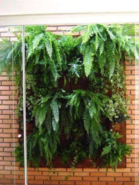 23. Samambaias são perfeitas para um jardim de inverno com área vertical