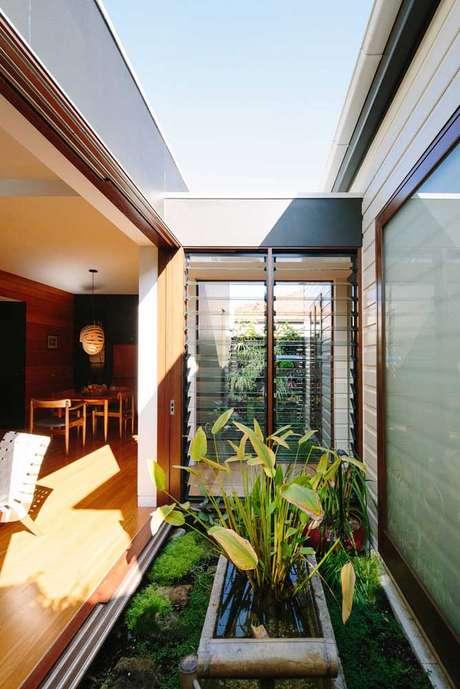 56. Plantas para jardim de inverno na sala – Via: Pinterest