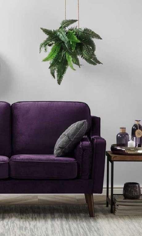 1. O verde das plantas traz um contraste interessante para o sofá roxo. Fonte: Pinterest