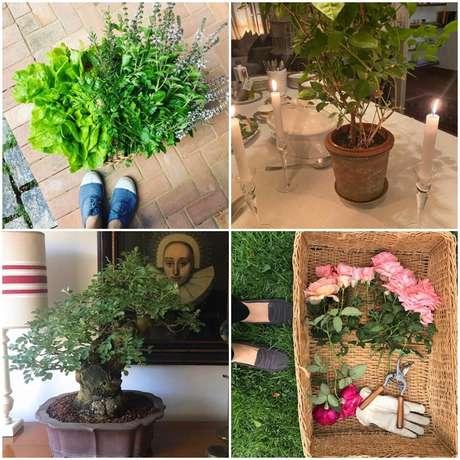 Nos momentos de folga, a jornalista tem prazer em cuidar de flores e da decoração