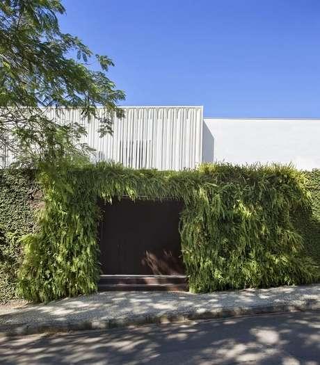 41. Modelo de muro com vegetação vertical e portão de madeira. Fonte: Gisele Taranto