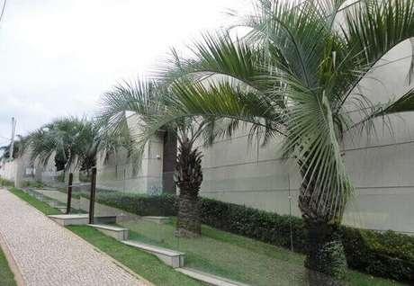 77. O modelo de muro para casa feito em vidro realça o paisagismo do imóvel. Fonte: Blog da Decoração