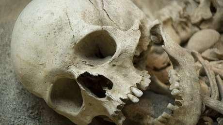Durante séculos de condições apocalípticas, os Neandertais foram extintos