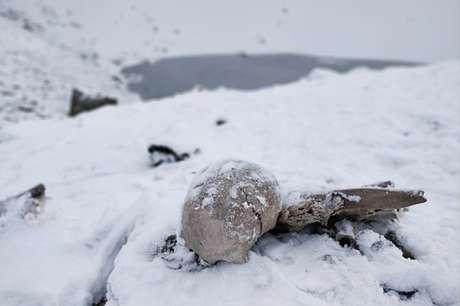 Esqueletos ficam boa parte do ano encobertos por neve e gelo