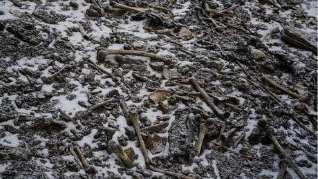 Local guarda algo entre 600 e 800 ossadas