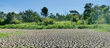 Imagens como esta contrastam com o esperado da estação de chuvas no Pantanal