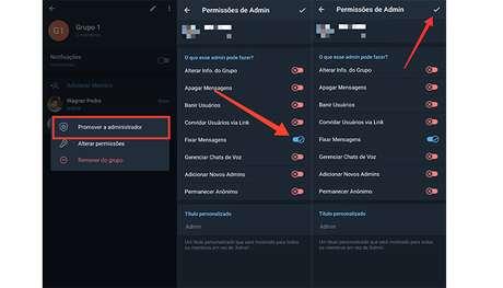 Processo para promover um membro a administrador em um grupo no Telegram