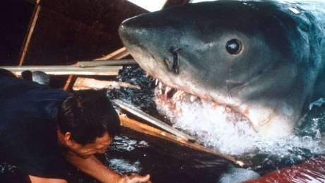 O filme 'Tubarão', baseado no livro de mesmo nome de Peter Benchley, teve um efeito desastroso na forma como as pessoas veem os tubarões