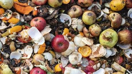 Estima-se que 17% dos alimentos disponíveis no mundo acabam sendo jogados fora