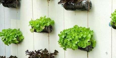19. As folhas de alface da horta com garrafa PET trazem cor para a parede da casa. Fonte: Pinterest