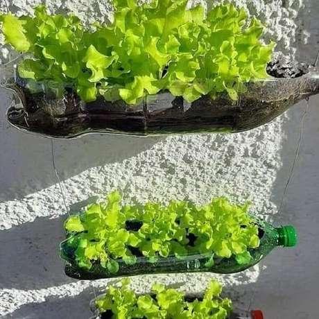 17. A horta com garrafa PET é simples, prática e eficiente. Fonte: Pinterest