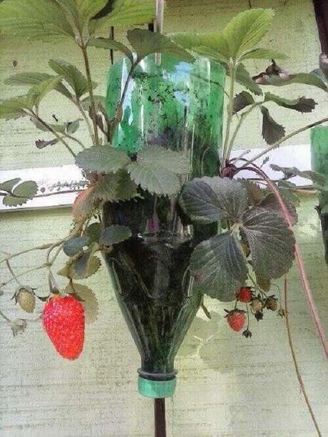 22. A horta com garrafa PET permite o cultivo de morangos. Fonte: Pinterest