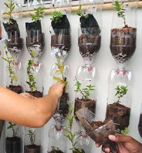 9. Jardim vertical com os vasos de garrafas pet interligados na parede. Fonte: Pinterest