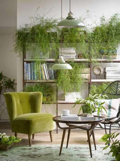 42. Poltrona verde oliva para sala decorada com vários vasos de plantas – Foto: Pinterest