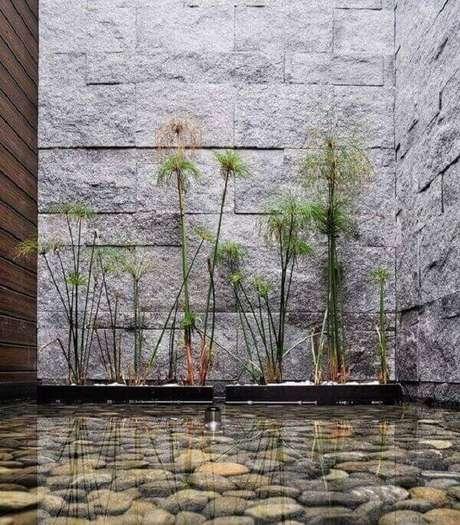 20. Revestimento de pedra para parede de jardim de inverno. Fonte: Pinterest