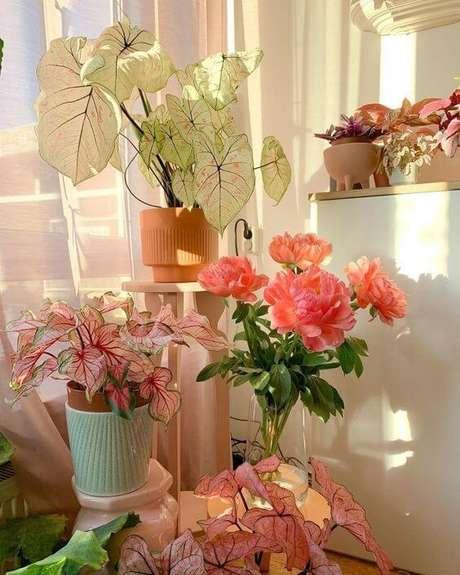 25. Flores e plantas cor de rosa para decoração – Foto Pinterest