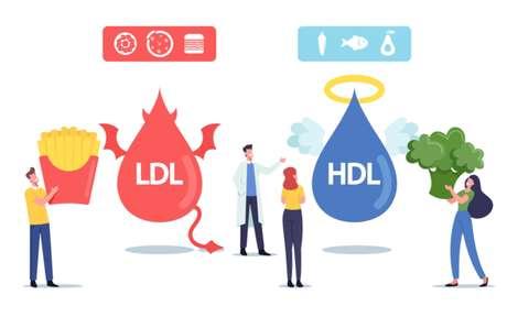HDL: como aumentar o bom colesterol?