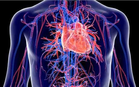 Sistema cardiovascular também pode ser afetado pela Covid 19