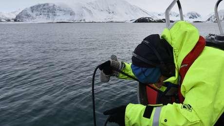 Oceanógrafos querem entender como a vida marinha respondeu à redução sem precedentes do tráfego de embarcações