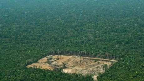 Ambientalistas dizem que aprovação da proposta de Irajá alimentaria a grilagem de terras, uma das principais causas para o desmatamento na Amazônia