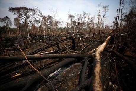 Vista de área desmatada na Floresta Nacional Bom Futuro, em Rondônia 12/09/2019 REUTERS/Bruno Kelly