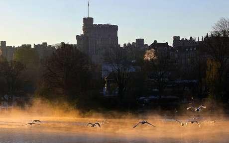 Pássaros voam sobre o lago do Castelo de Windsor