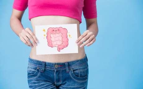Intestino protegido ajuda a manter o sistema imunológico equilibrado