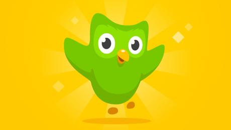Como reiniciar um idioma no Duolingo