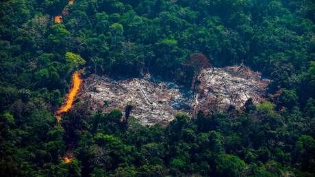 Área desmatada dentro da Terra Indígena Menkragnoti, no Pará