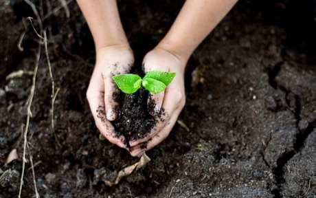 Dia da Terra: 10 maneiras para ajudar o nosso planeta