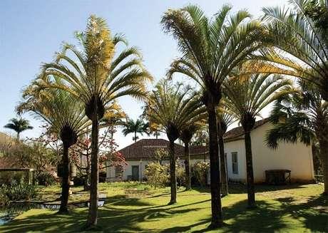68. Casa de fazenda com paisagismo inspirado nos projetos de Burle Marx. Fonte: Pinterest