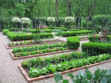 76. Construa um canteiro de horta na área externa da casa de fazenda. Fonte: 44 Arquitetura