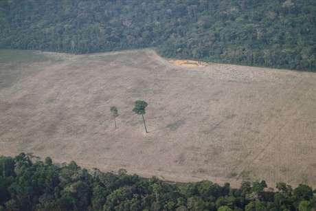Vista aérea de área da Amazônia desmatada em Rondônia 14/08/2020 REUTERS/Ueslei Marcelino