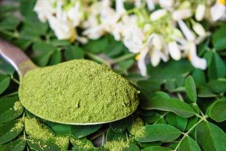 Moringa: Conheça 3 receitas com a planta -