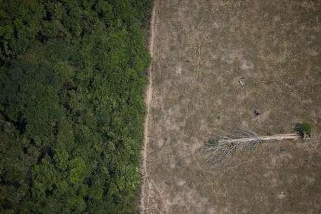 Área desmatada da Amazônia perto de Porto Velho, em Rondônia 14/08/2020 REUTERS/Ueslei Marcelino