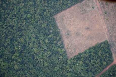 Área desmatada da Amazônia na região de Porto Velho (RO)  21/08/2019 REUTERS/Ueslei Marcelino