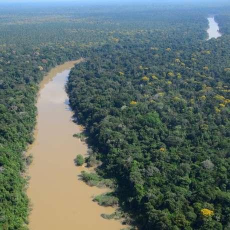 Pesquisadores estudaram uma área de floresta em um ponto remoto do nordeste do Peru