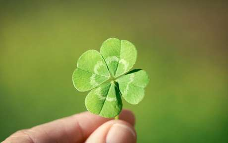 Com essas simpatias a sorte andará ao seu lado - Shutterstock
