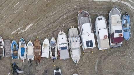 """Pequenos barcos de pesca não podem navegar devido ao """"muco do mar"""""""
