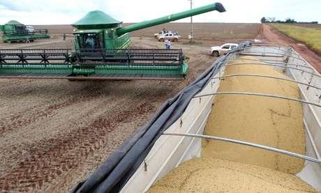 Colheita de soja em Primavera do Leste (MT)  29/01/2013 REUTERS/Paulo Whitaker