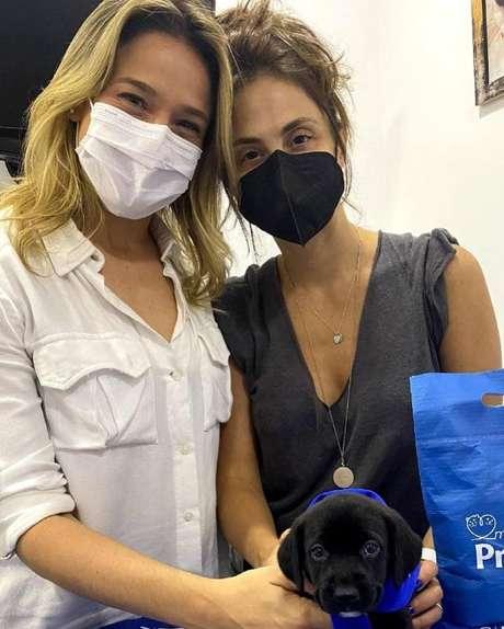 Fernanda Gentil e Priscila Montandon adotam cachorrinha.