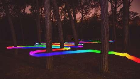 Se as cores são propriedades da luz, não dos objetos, e quando as vemos neles é por obra da nossa mente, isso quer dizer que... ???